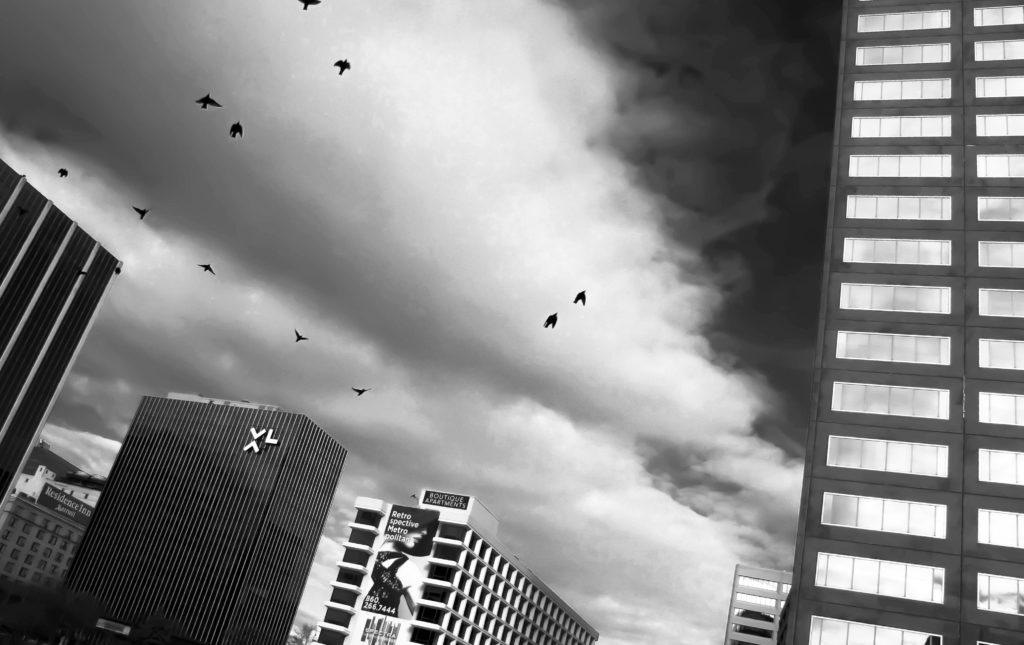 Grey Skies - Jack N.